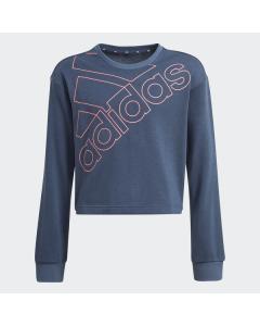 ADIDAS otroško pulover G LOGO SWT   CRENAV/HAZROS